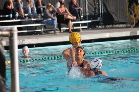 Cougars make a splash with their first league game of the season