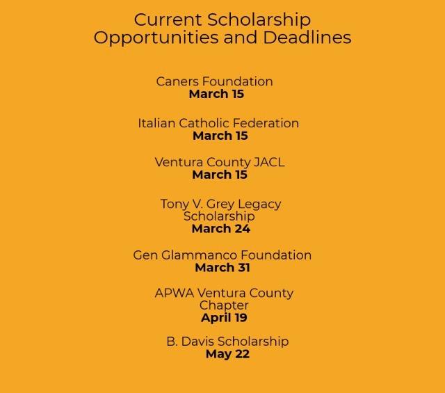 Seniors+searching+for+scholarships