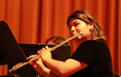 Musicians look sharp at Spring Concert