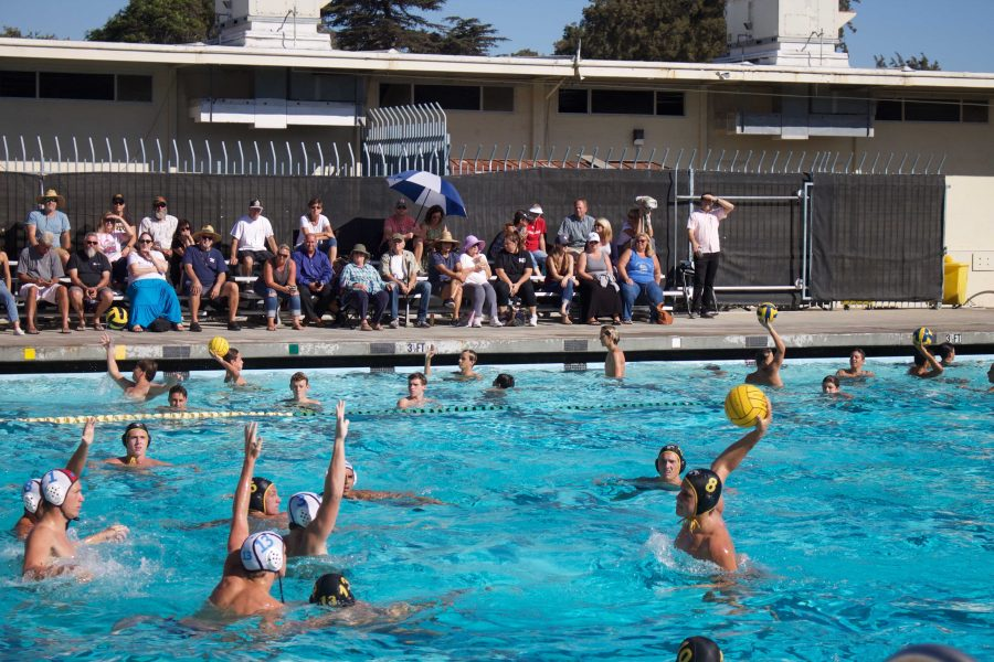 VHS Boys' Water Polo Defeats Buena 15-4