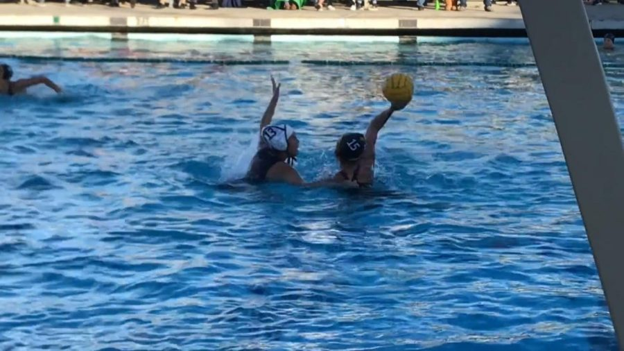 Ventura girls varsity water polo vs. Alemany