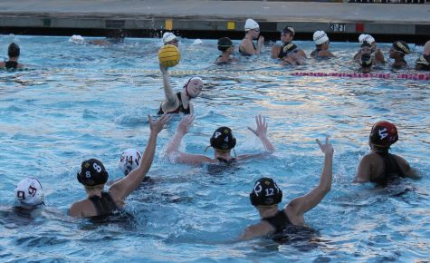Girls polo send the yellow jackets back to the hive