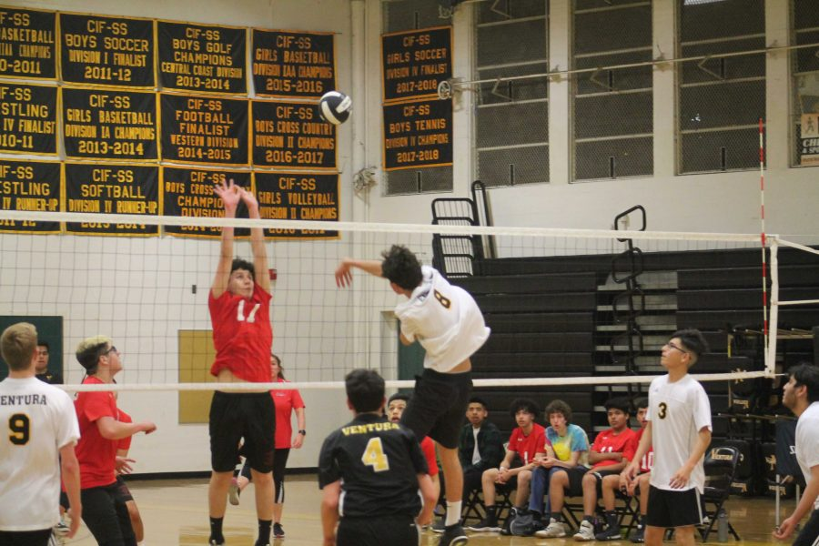 Junior+Dylan+Nicodemus+%28number+8%29+hard-hitting+the+ball+to+opposing+side%2C+Port+Hueneme+High.+Photo+by%3A+Jocelyn+Lee